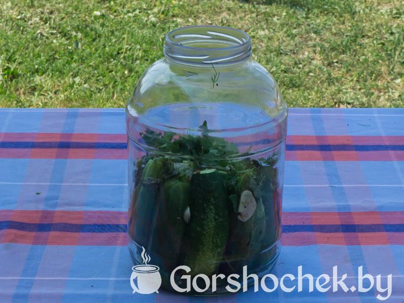 Хрустящие малосольные огурцы (пошаговый рецепт с фото) На первый слой огурцов выкладываем вторую часть специй